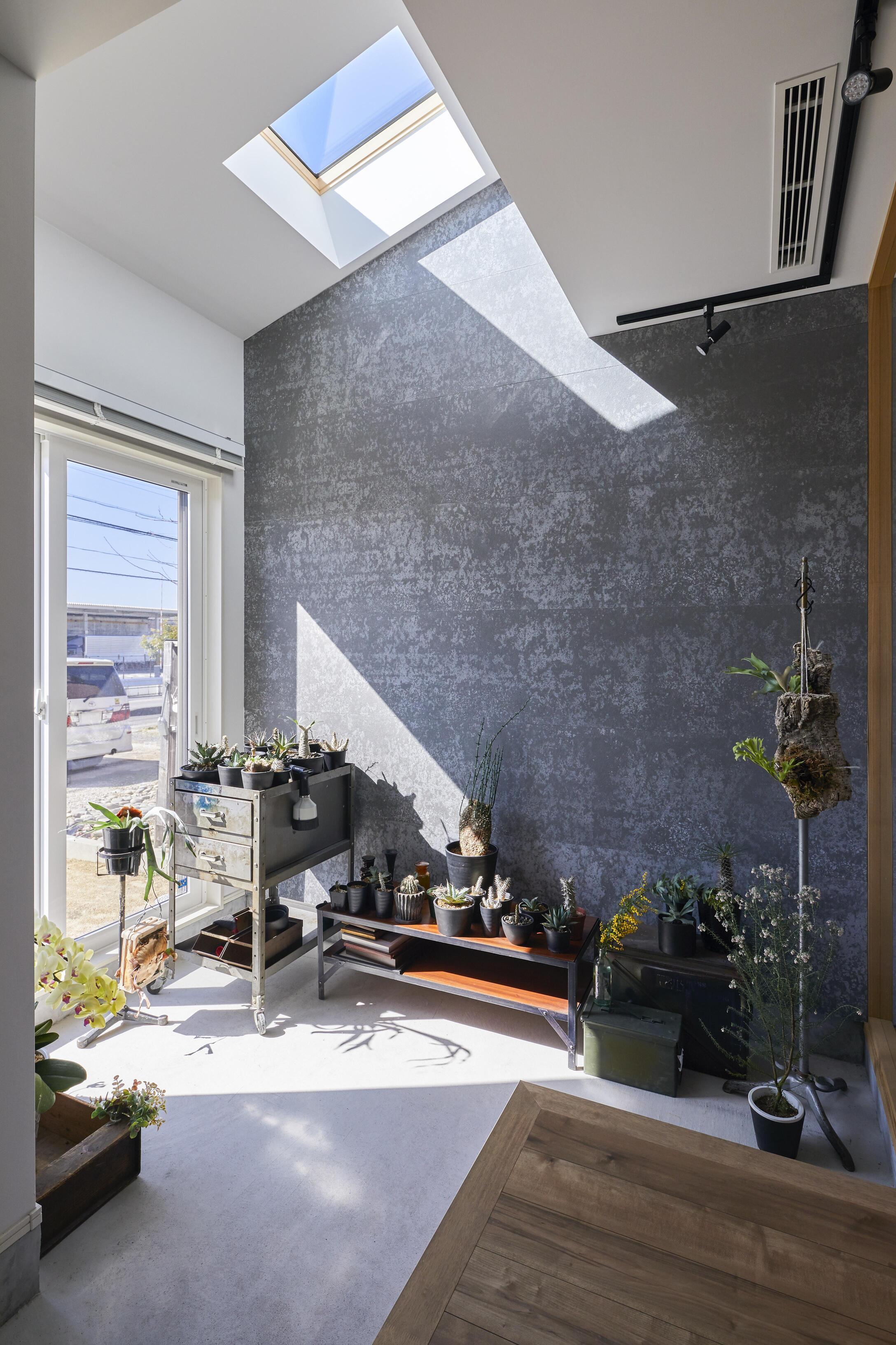 植物好きなご主人が趣味を愉しめるように玄関に植物菜園スペースをご用意。天窓から明るい光が差し込んでいる